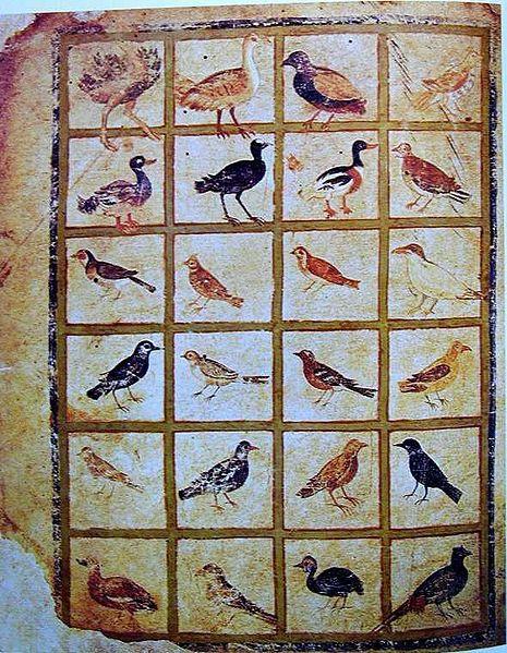 465px-ViennaDioscoridesFolio483vBirds